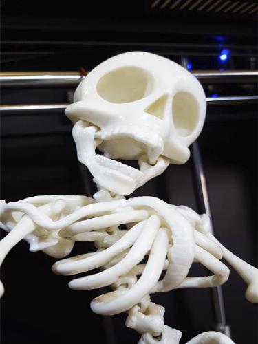 Esqueleto Divertido Articulado