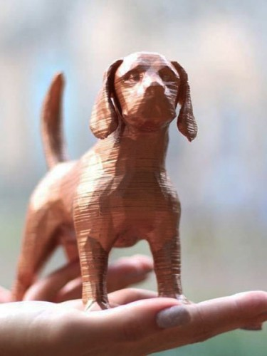 Beagle 3D