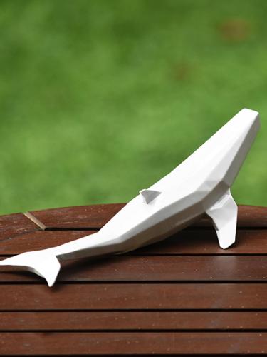 Baleia Geométrica