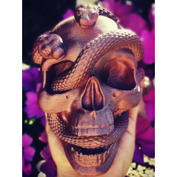 Caveira Cobras
