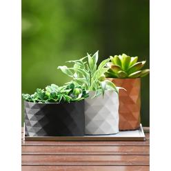 Conjunto de Vasos geométricos