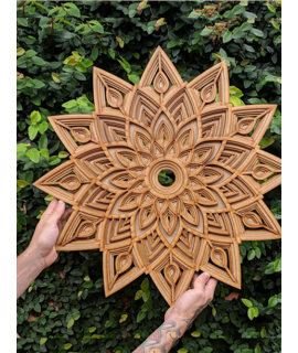 Mandala Tachã - Cru