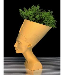 Nefertiti Vaso