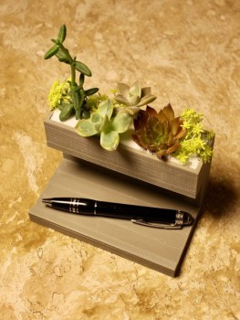 Floreira - Porta Canetas/Cartões